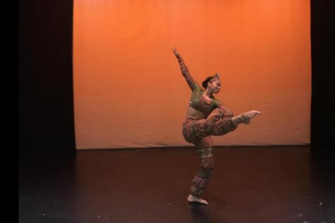 Special needs classes show individual expression during dance holiday show