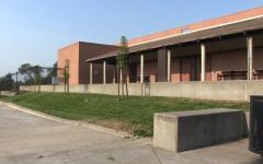 """TOWNSEND: Landscaping takes the """"Rose"""" out of Roseville High"""