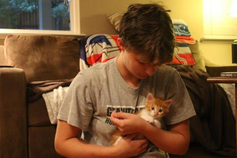 Two RHS students foster furry friends