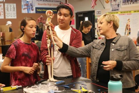 Students work with model skeletons in PLTW Biomedical classes. Biomed student Jazzy Kittle said that school-established internship pathways would be beneficial for providing biomedical students with real-world experience.