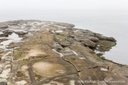 Eroded sandstone beach with fog obscuring the sea and sky beyond