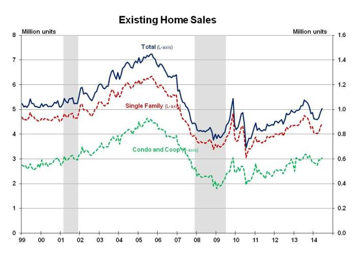 Existing Home Sales June 2014