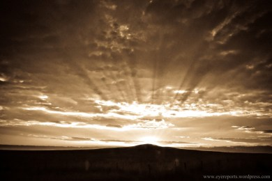 sepia sun over the free state