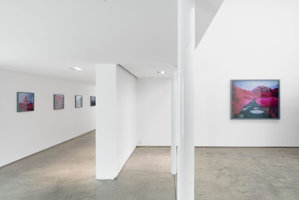 Richard Mosse, Installation View. Image courtesy of Jack Shainman Gallery, 2016
