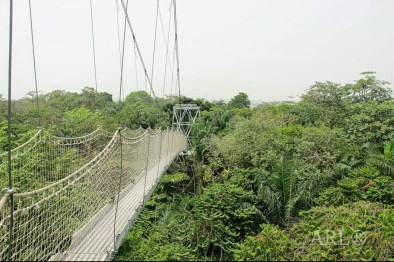 Canopy Walk way - Longest in Africa