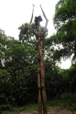 Osun Grove - Photo by Bolaji Alonge