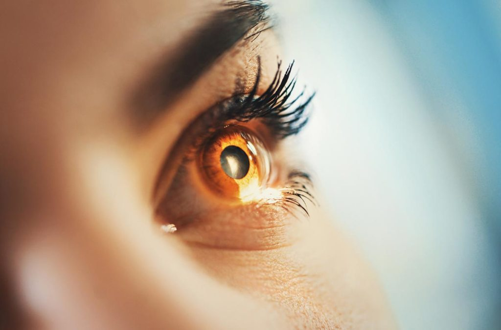 New Study Outline Changes in Eye Bacteria in Contact Lens Wearers