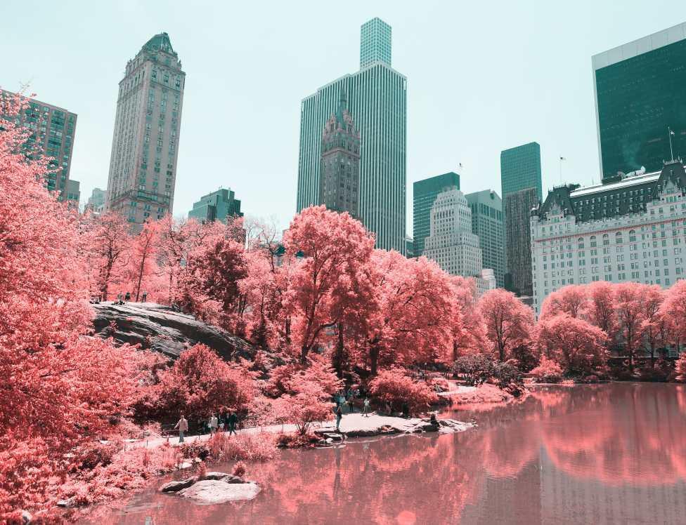 Paolo Pettigiani - Infrared NYC
