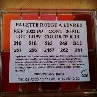 Review: Maqpro Petite Lipstick Palette R13