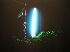 Dayanita Singh, Dream Villa Slideshow