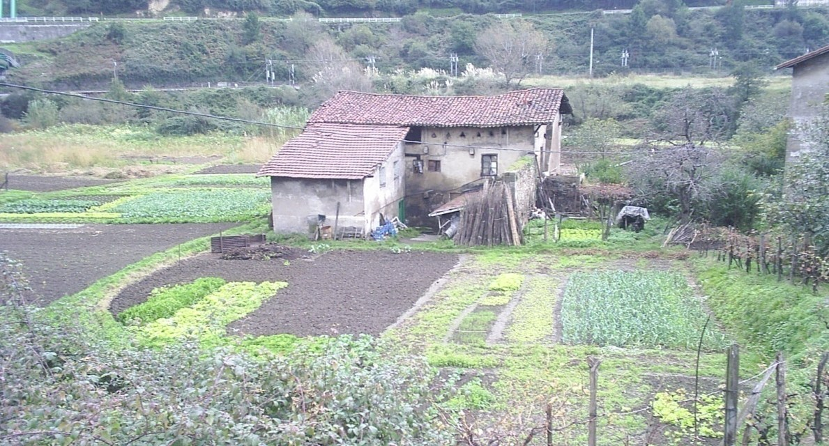Las casas-torre en Barakaldo (II)