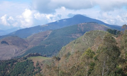 La Arboleda: Ganerán