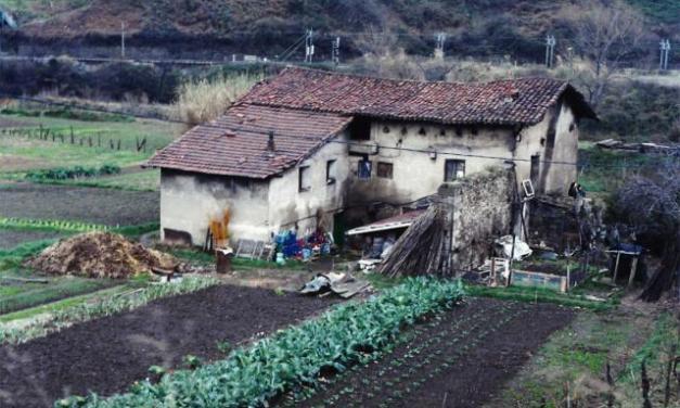 Toponimia barakaldesa: Zorrotza, Zubileta, Zuazo