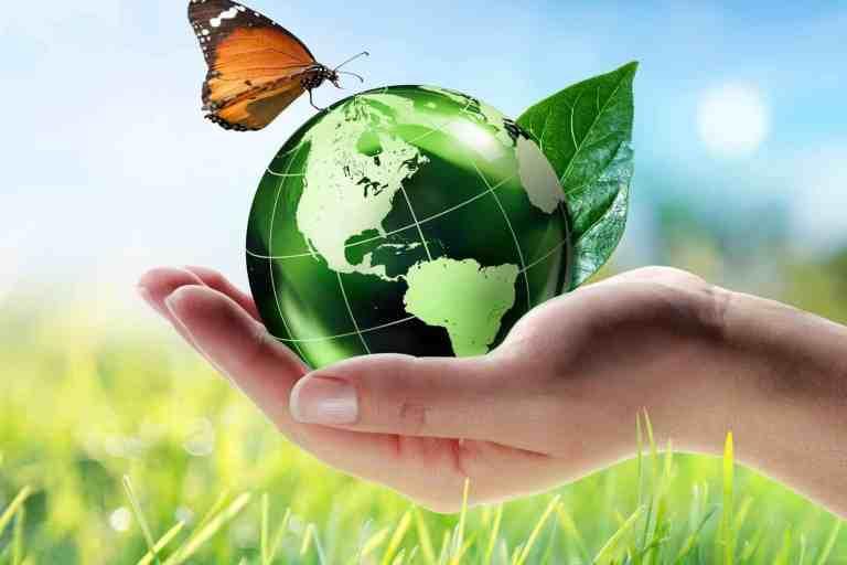 Environmentally Friendly Companies