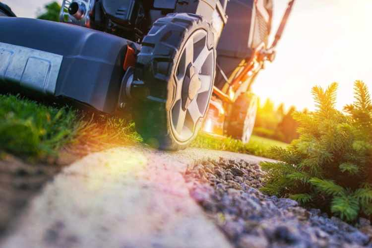 Lawn Care and Junk Removal