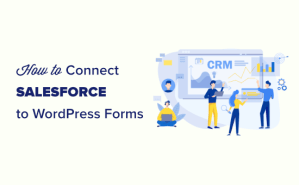 How to Connect Salesforce with WordPress (No Code Solution)