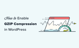 How to Enable GZIP Compression in WordPress (3 Ways)