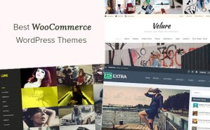 49 Best WooCommerce WordPress Themes (2021)