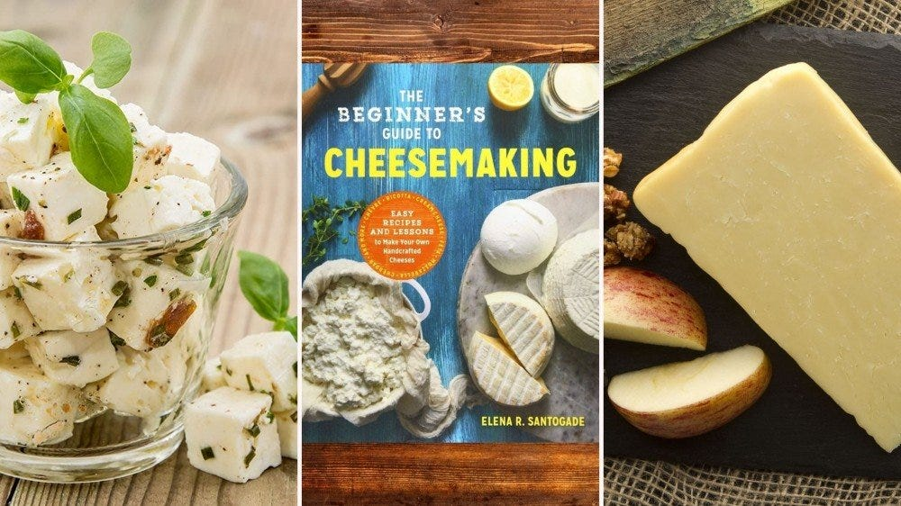 Various cheeses and a cheesemaking book.
