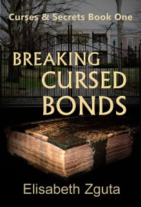 BCB Cover book one 100