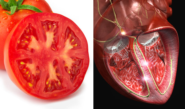 06-Tomato-HeartFoods-That-Look-Like-Body-Parts-1