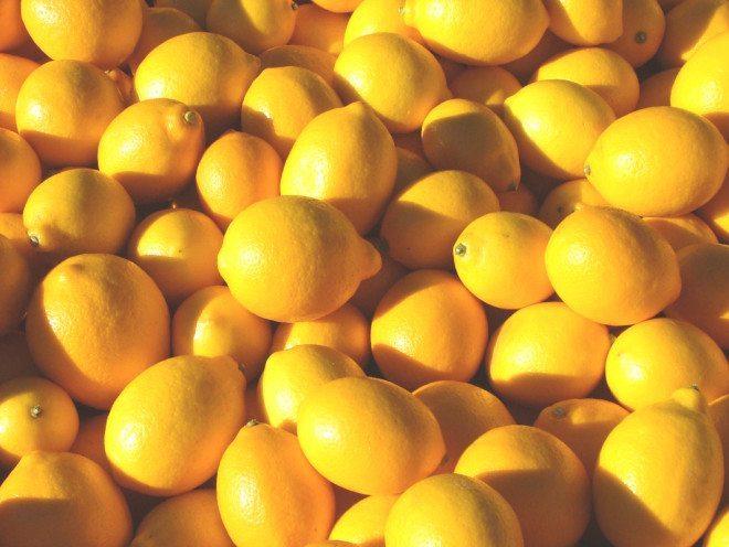 Lemons (1)