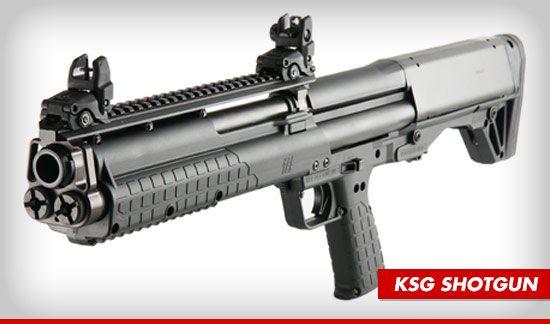 ksg-1