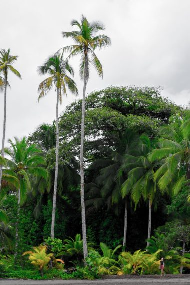 Choco, Colombia