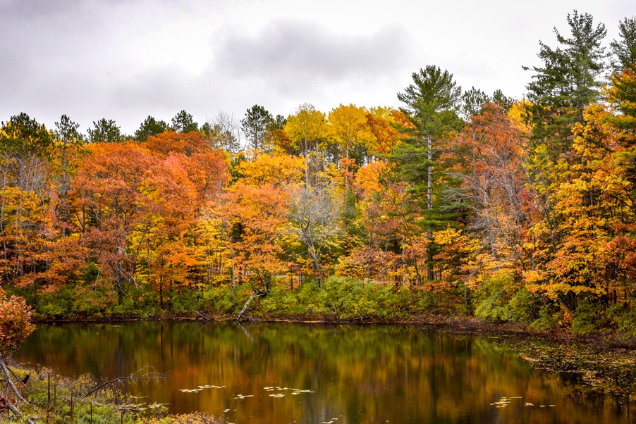 Upper Peninsula Travel Guide To Marquette's Amazing Hikes