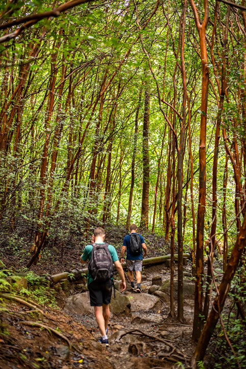 Oahu Hikes: 9 Oahu Hikes not to Skip