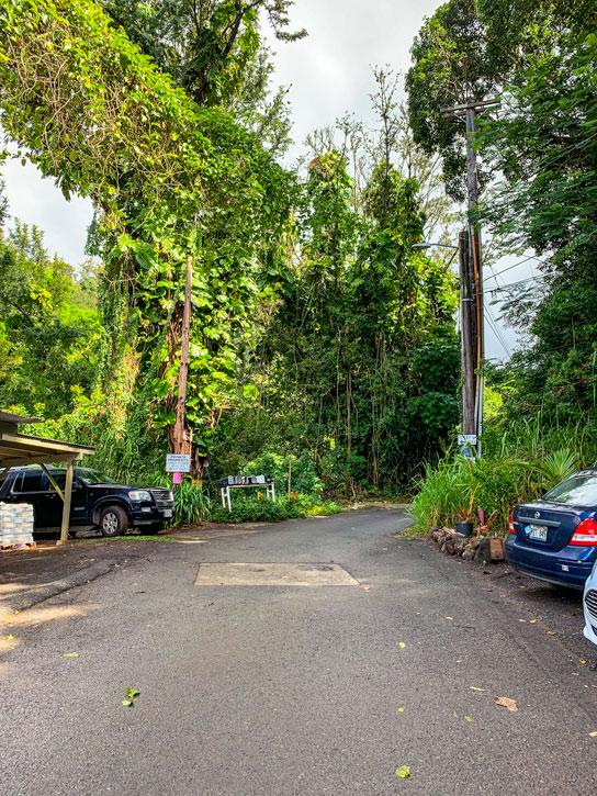 Ka'au Crater Hike Parking