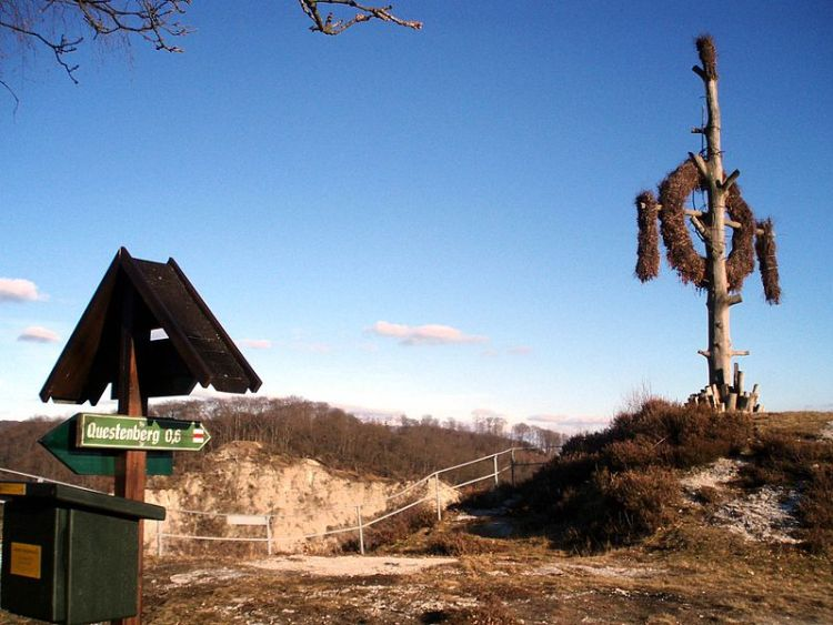 Questenberg2008