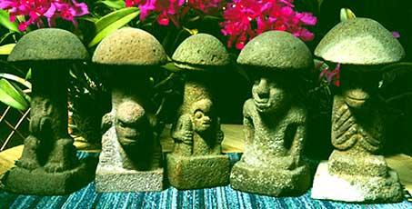 волшебные грибы гватемалы