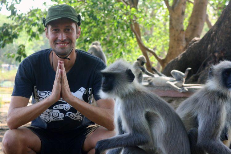 Эллора обезьяны
