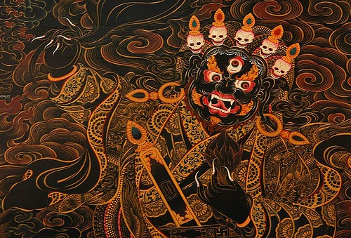 black and gold, bylekuppe, coorg 500x339