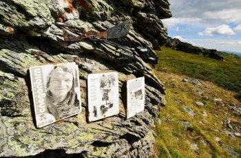 Гибель Дятлова — одно из самых загадочных и жутких происшествий 20 века, случившееся в ночь с 1 на 2 февраля 1959 года на Северном Урале, когда при невыясненных обстоятельствах погибла группа туристов, возглавляемая Игорем Дятловым.
