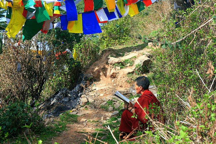 Тибетская медицина слизь. Обзор диагностики и лечения