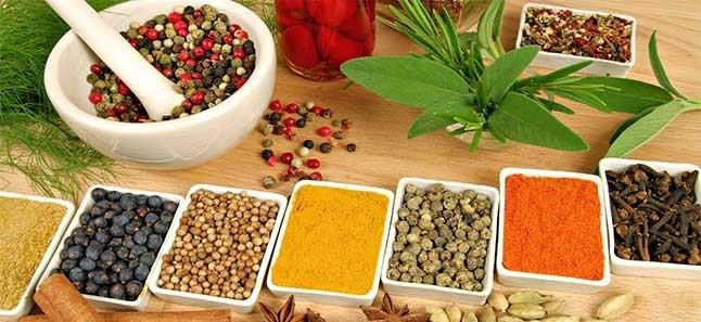 Аюрведа Индия. Рецепты и лечение