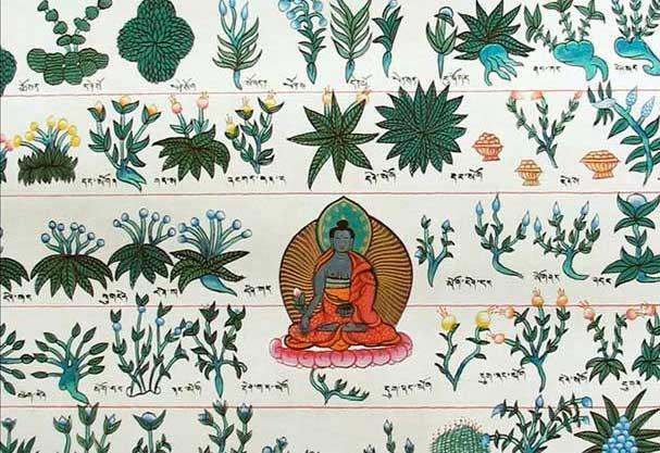 Что такое тибетская медицина? 16 вопросов о тибетской медицине