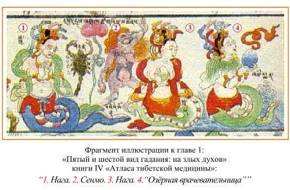 божества, демоны, духи местности наги тибета
