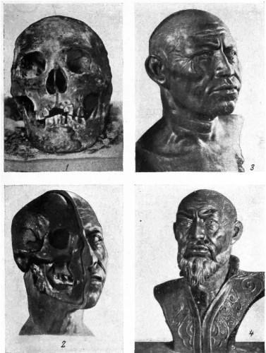 Тамерлан реконструкция черепа