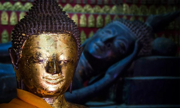 Тибетская Медицина Психические Болезни. 5 Причин Безумия