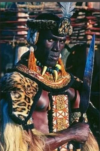 Чака вождь Зулусов. Африканский завоеватель 19 века