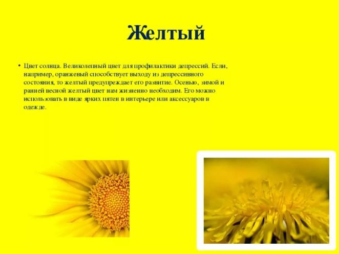 Желтый цвет влияет на наш мозг в позитивном ключе