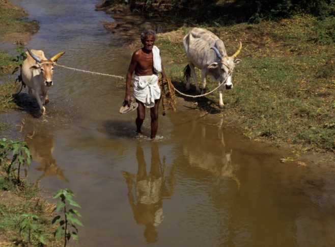 Касты в Южной Индии. Кто реально управляет Индостаном