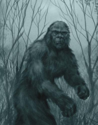 Снежный Человек Йети. Мифы или реальность существования