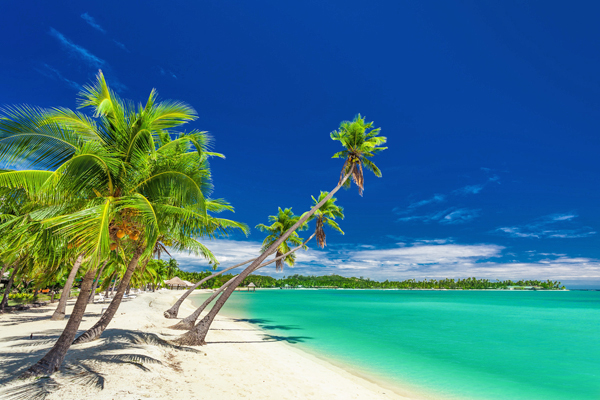 Beach with palm trees over the lagoon on Fiji Islands