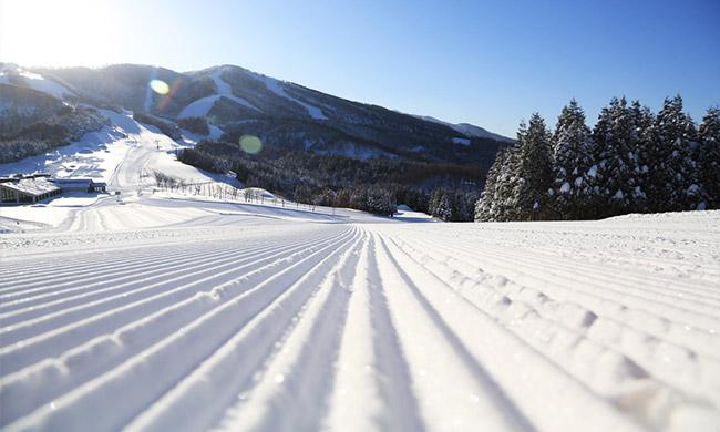 ski-06-1