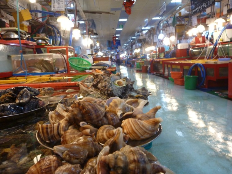 Fish-market-Busan-South-Korea