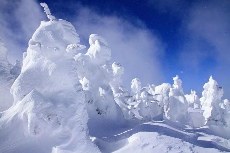 Zao Mountain , Japan-shutterstock_137324549.jpg